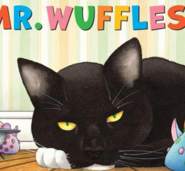 Mr Wuffles!